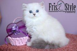 Frisstyle Ismeralda